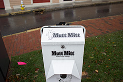 Mutt Mitt Program